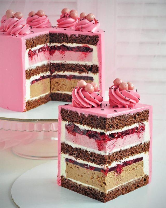 Шоколадный торт с малиновым муссом и шоколадным чизкейком