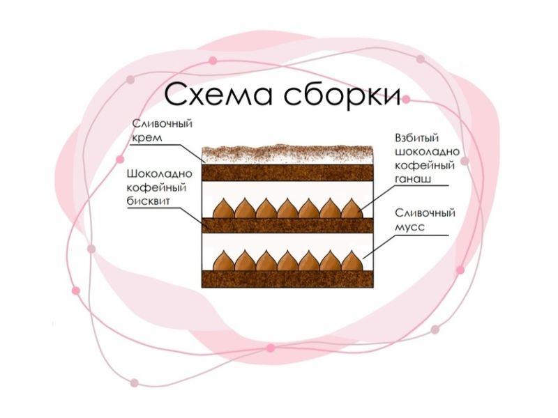 Торт Шоколадный мокко сборка